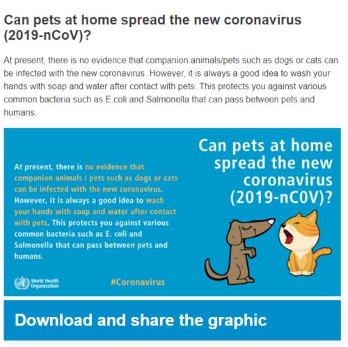 新型コロナウイルス ペットからの感染